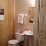 Shiloh Cabin-1 bath-1
